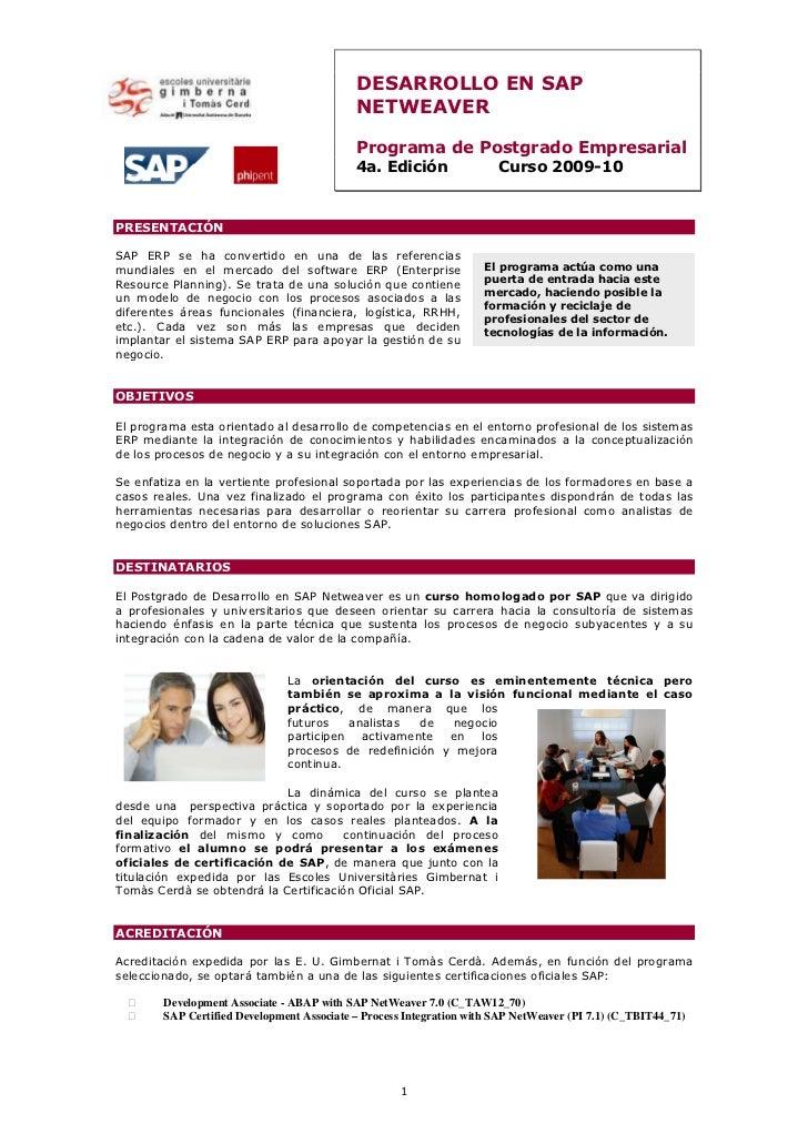 DESARROLLO EN SAP                                            NETWEAVER                                            Programa...