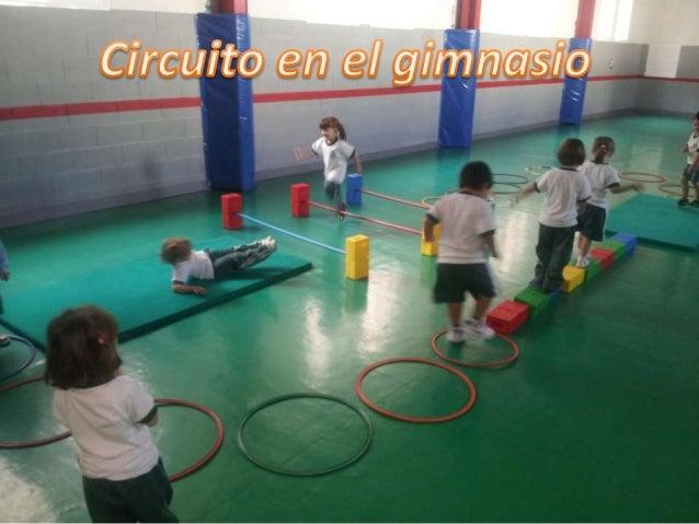 Circuito Gimnasio : Circuito gimnasio