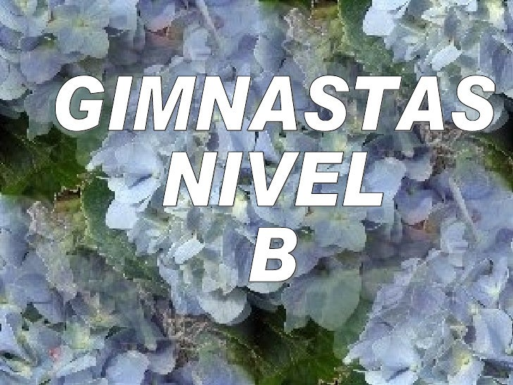 GIMNASTAS  NIVEL  B