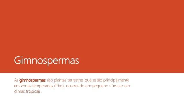 Gimnospermas As gimnospermas são plantas terrestres que estão principalmente em zonas temperadas (frias), ocorrendo em peq...