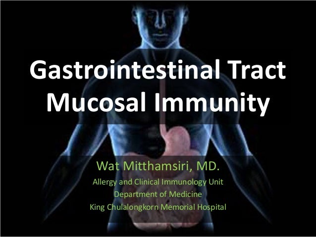 Gastrointestinal Tract Mucosal Immunity Wat Mitthamsiri, MD. Allergy and Clinical Immunology Unit Department of Medicine K...