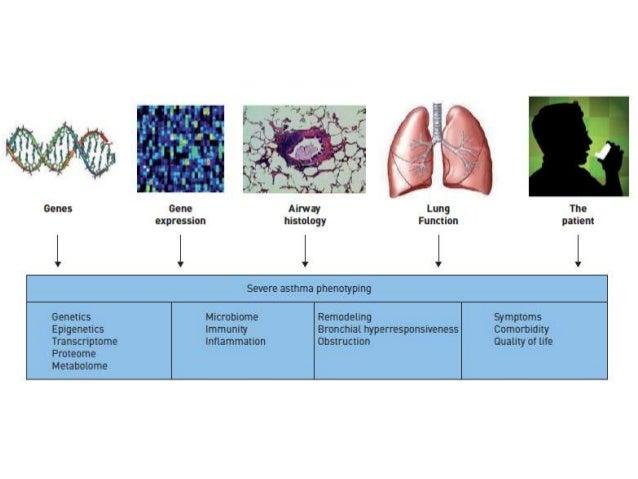 • Broncoconstricción • Edema en la pared bronquial • Congestión vascular aumento de resistencia • Obstrucción de la luz • ...