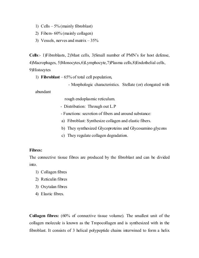 1) Cells – 5% (mainly fibroblast) 2) Fibers- 60% (mainly collagen) 3) Vessels, nerves and matrix – 35% Cells:- 1)Fibroblas...