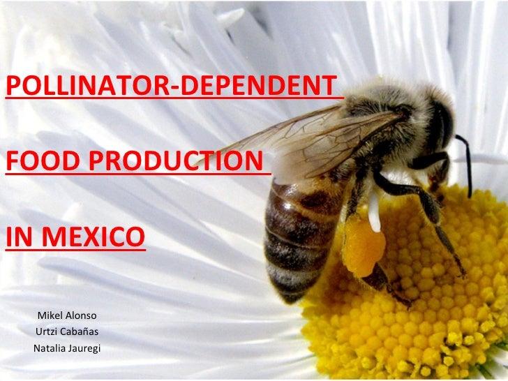 POLLINATOR-DEPENDENT  FOOD PRODUCTION  IN MEXICO Mikel Alonso Urtzi Cabañas Natalia Jauregi