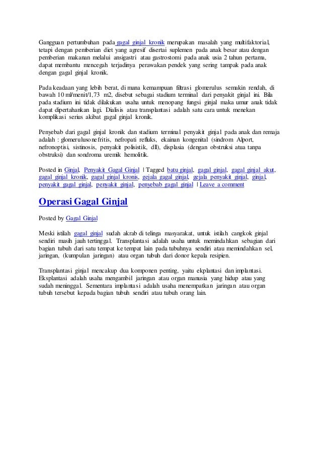Diet Pada Penderita Penyakit Ginjal Kronik