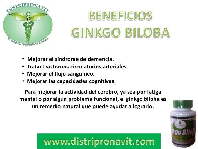 Ginkgo biloba propiedades beneficios para adelgazar