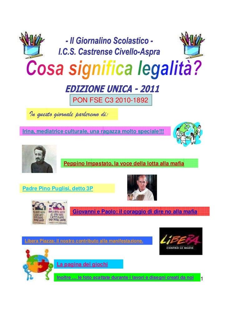 PON FSE C3 2010-1892  In questo giornale parleremo di:Irina, mediatrice culturale, una ragazza molto speciale!!!          ...