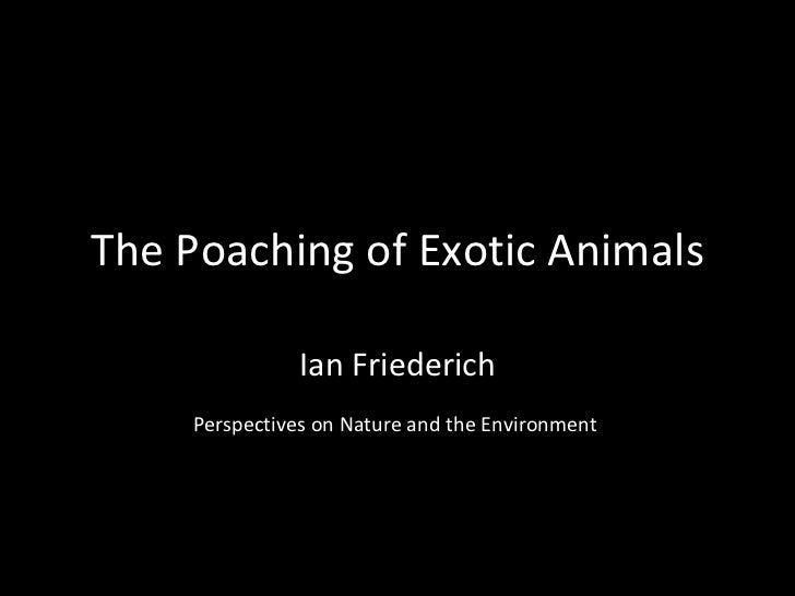 The Poaching of Exotic Animals Ian Friederich Perspectives on Nature and the Environment