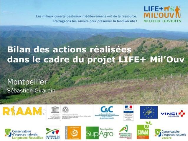 Bilan des actions réalisées dans le cadre du projet LIFE+ Mil'Ouv Montpellier Sébastien Girardin