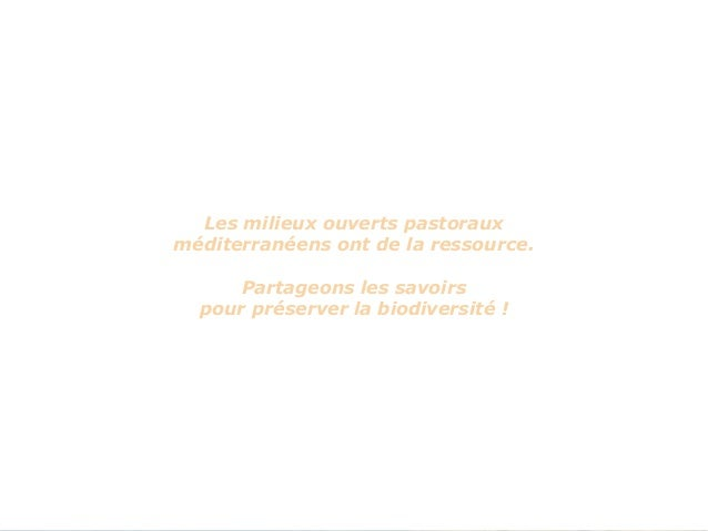 Bilan des actions réalisées dans le cadre du projet Life+ Mil'Ouv - GIRARDIN Slide 3