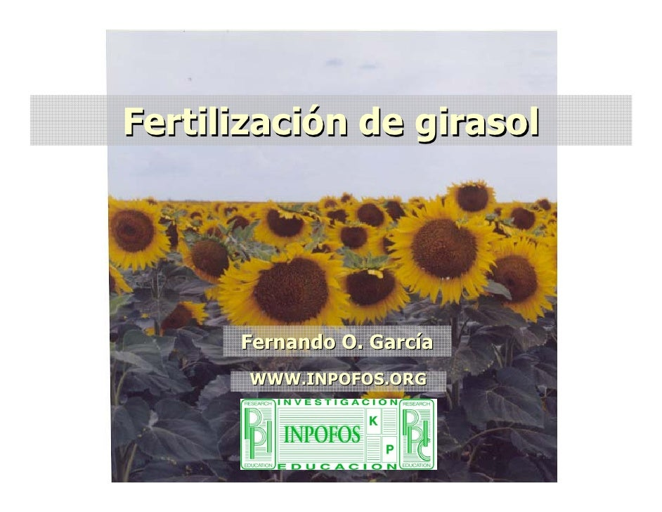 Fertilización de girasol           Fernando O. García        WWW.INPOFOS.ORG