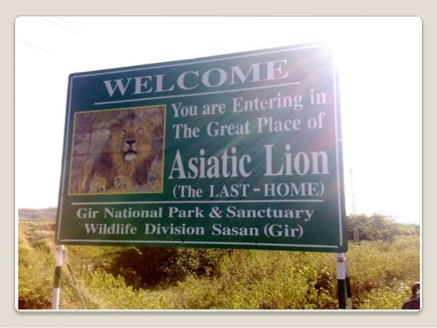 Gir Forest About 1. Coverage 2. Animal – count 3. Types of people 4. Types of trees 5. Government doing save the forest
