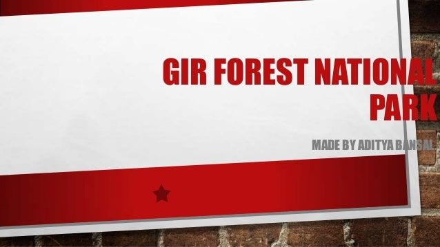 GIR FOREST NATIONAL PARK MADE BY ADITYA BANSAL.