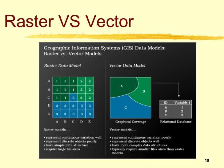 Raster VS Vector                   10