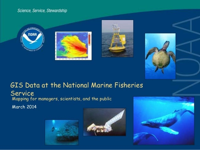 GIS Data at the National Marine Fisheries Service Mapping for managers, scientists, and the public March 2014