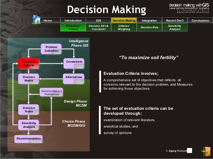 gis decision making literature review