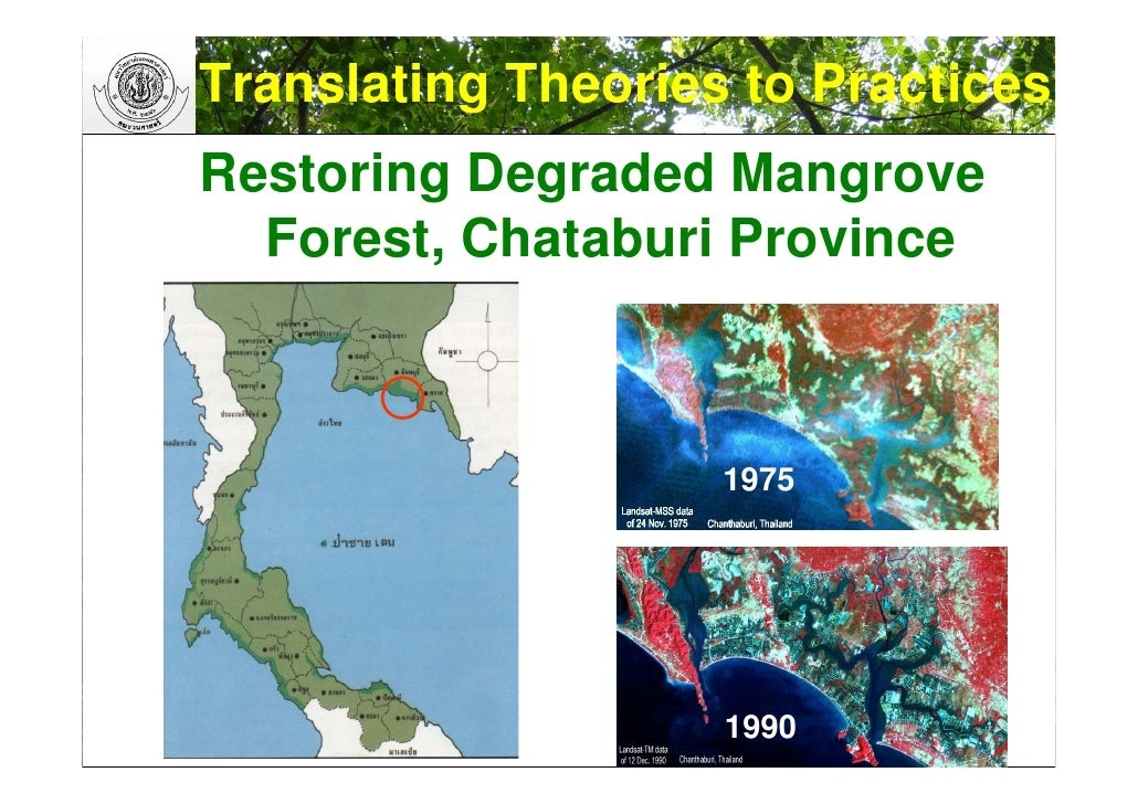 researchpaper vegetation gis 2004 Invasive species management and research using gis tracy holcombe public data such as elevation, vegetation type, and climate information are now available for free on the internet can be collected in the field using either paper maps.
