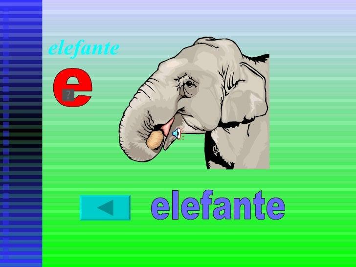 elefante e elefante