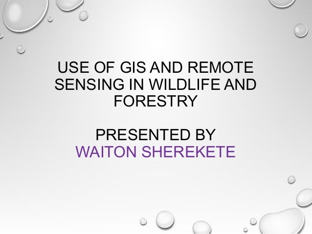 USE OF GIS AND REMOTE SENSING IN WILDLIFE AND FORESTRY PRESENTED BY WAITON SHEREKETE