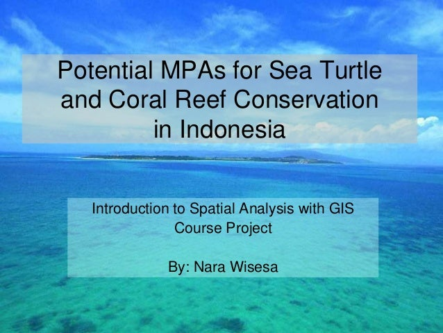 Potential MPAs for Sea Turtleand Coral Reef Conservation         in Indonesia   Introduction to Spatial Analysis with GIS ...