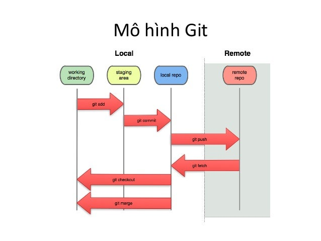 Mô hình Git