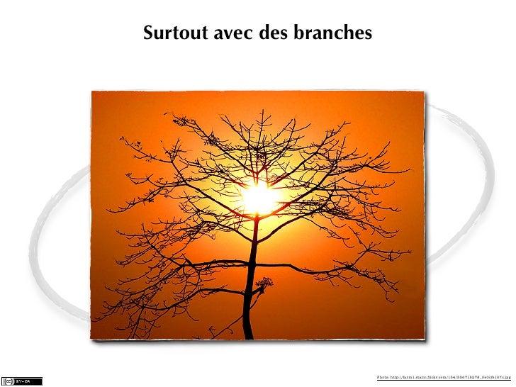 Surtout avec des branches                            Photo: http://farm1.static.flickr.com/154/356715278_0e0cfe107c.jpg