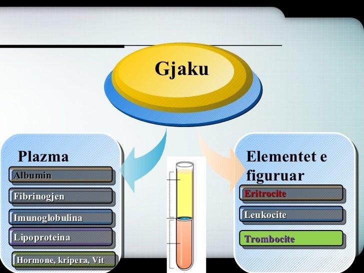 Gjaku Slide 3