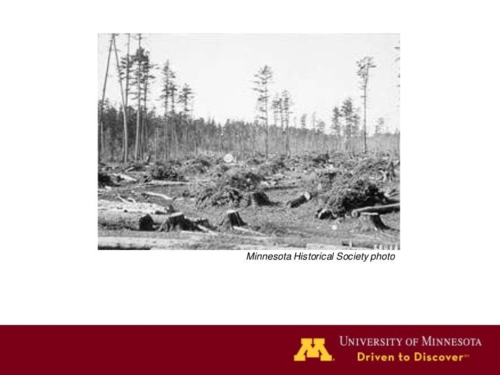 Minnesota Historical Society photo