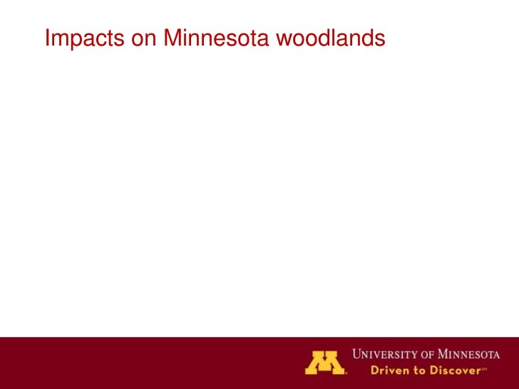 How these slides work                  Source: USFS Climate Change Atlas for Northeast US Tree                            ...
