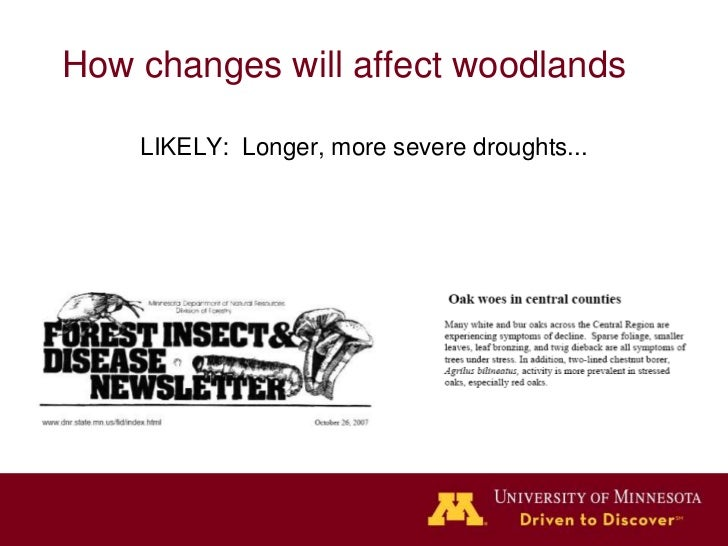 How changes will affect woodlands     LIKELY: Longer, more severe droughts...       …and more frequent catastrophic events...