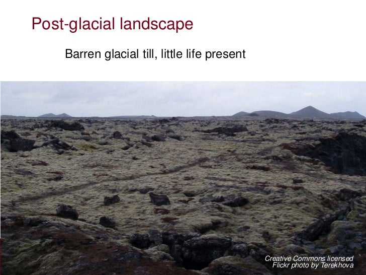 Post-glacial landscape    Barren glacial till, little life present                                               Creative ...