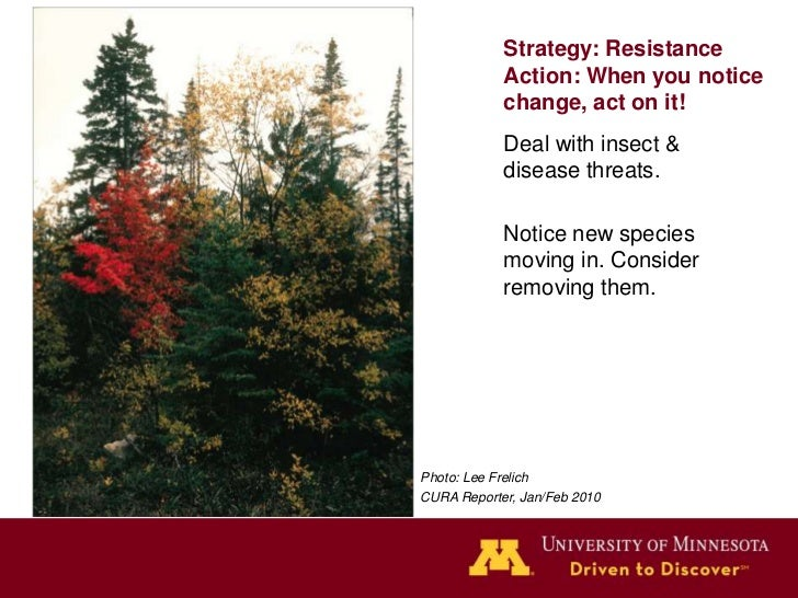 Strategy: ResilienceActions: Maintain speciesand age class diversity,maintain vigor and health,reduce fragmentation.