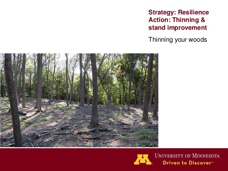 Strategy: ResilienceAction: EradicateEradicate or controlinsects, disease, andinvasives