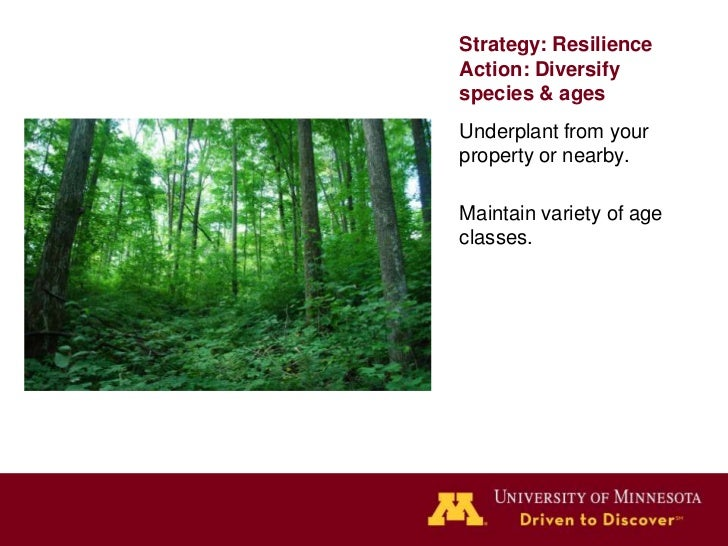 """Strategy 3: Facilitation""""Actions to mimic, assist, orenable ongoing naturaladaptive processes such asspecies dispersal,col..."""