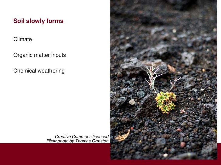 Soil slowly formsClimateOrganic matter inputsChemical weathering                  Creative Commons licensed             Fl...