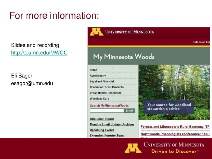 Minnesota Woodlands and Climate Change
