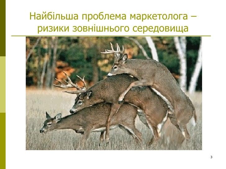 gladunov_prom2009 Slide 3