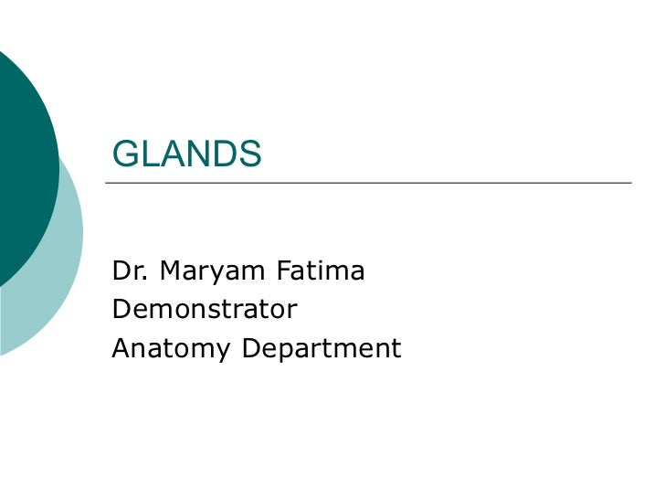 GLANDS Dr. Maryam Fatima Demonstrator Anatomy Department