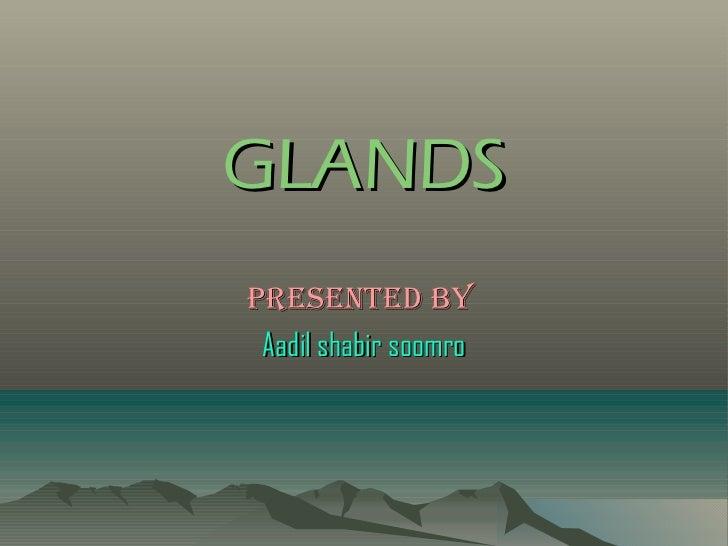 GLANDSPresented by Aadil shabir soomro