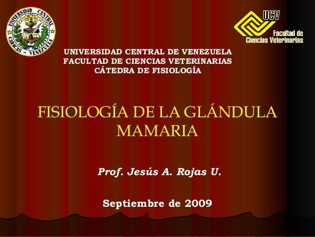 Prof. Jesús A. Rojas U. FISIOLOGÍA DE LA GLÁNDULA MAMARIA UNIVERSIDAD CENTRAL DE VENEZUELA FACULTAD DE CIENCIAS VETERINARI...
