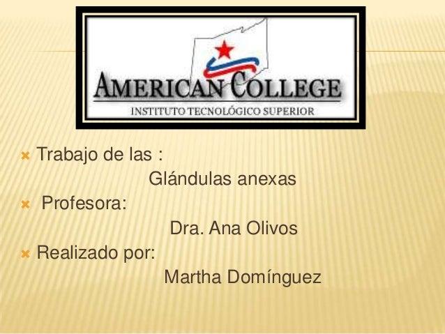  Trabajo de las : Glándulas anexas  Profesora: Dra. Ana Olivos  Realizado por: Martha Domínguez