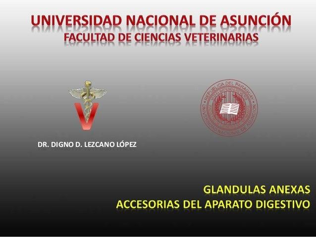 DR. DIGNO D. LEZCANO LÓPEZ