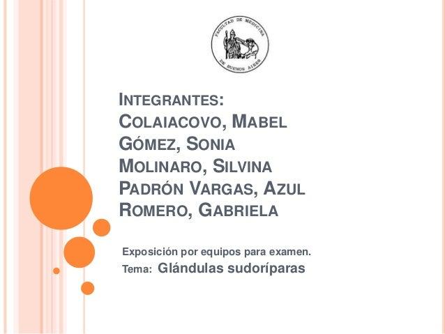 INTEGRANTES: COLAIACOVO, MABEL GÓMEZ, SONIA MOLINARO, SILVINA PADRÓN VARGAS, AZUL ROMERO, GABRIELA Exposición por equipos ...