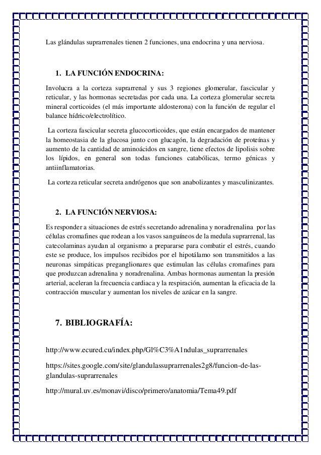 RESUMEN DE LAS GLÁNDULAS SUPRARRENALES