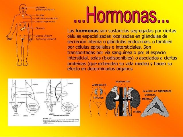que hacen los esteroides en los musculos