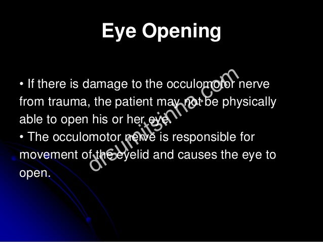 Eye Opening • If there is damage to the occulomotor nerve from trauma, the patient may not be physically able to open his ...
