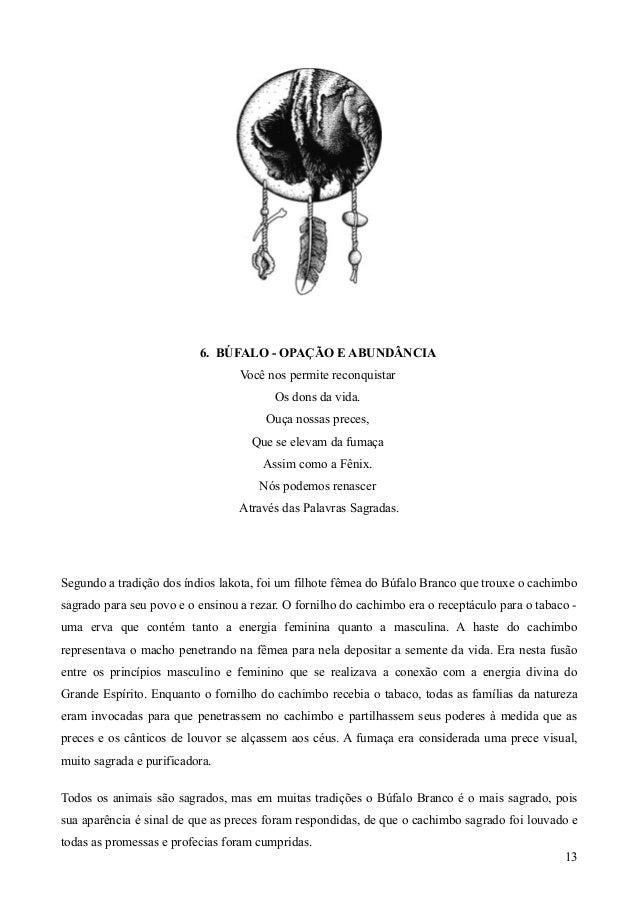 Cartas Xamanicas Sandra Reginna Moreira