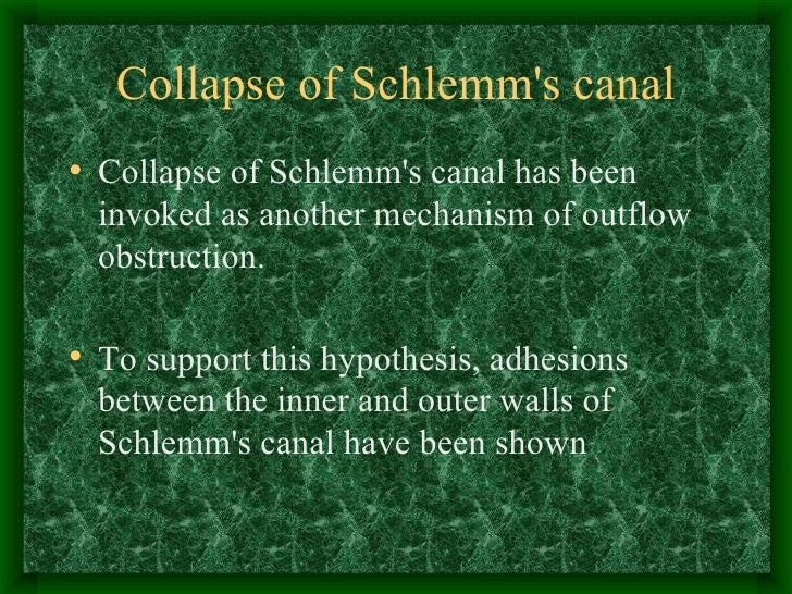 Collapse of Schlemm's canal <ul><li>Collapse of Schlemm's canal has been invoked as another mechanism of outflow obstructi...