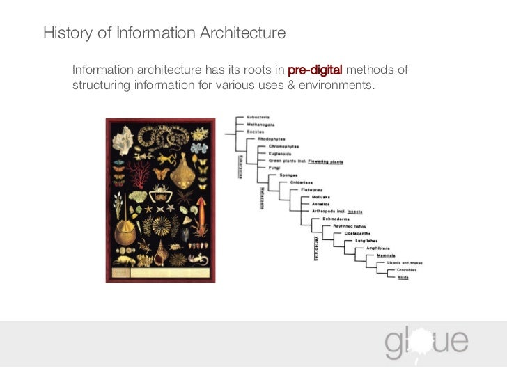 History of Information Architecture Information architecture has its roots in  pre-digital  methods of structuring informa...
