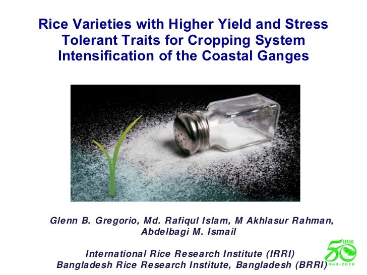 Rice Varieties with Higher Yield and Stress Tolerant Traits for Cropping System Intensification of the Coastal Ganges Glen...